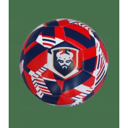 Ballon SM Caen 2020 T5